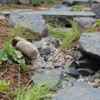 granit i haven